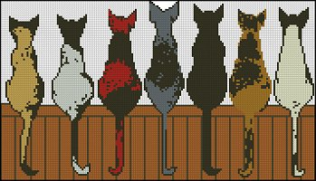 7 Cats