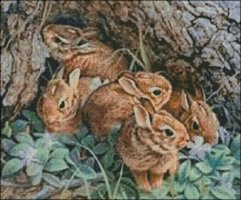 A herd of Rabbits - Large