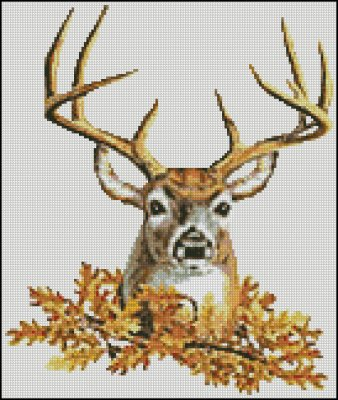 Stag - Click Image to Close