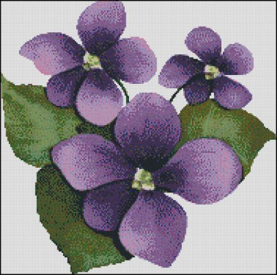 Violets - Click Image to Close